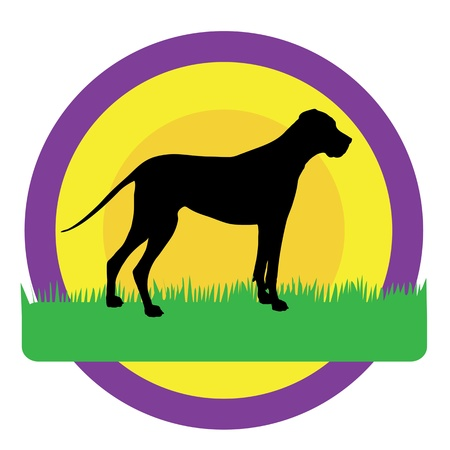 A silhouette of a Great Dane against purple,yellow and orange circles. There is green grass beneath his feet with room for text