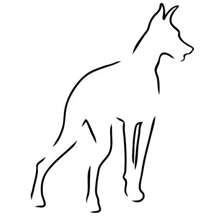 pinscher:  A stylized outline of a Doberman Pinscher standing guard