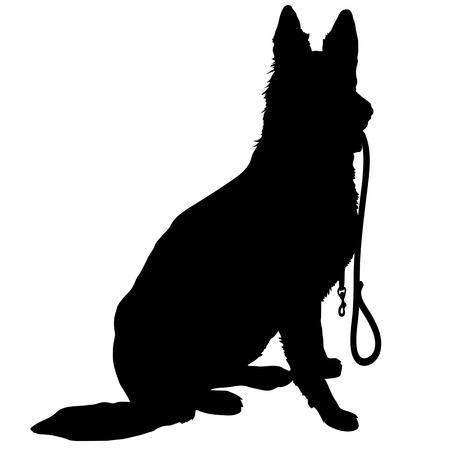 Silhouet van een Duitse herder met een riem en klaar om te gaan voor een wandeling