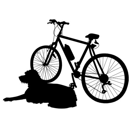 A dog is lying dog next to a bike waiting for his owner to return