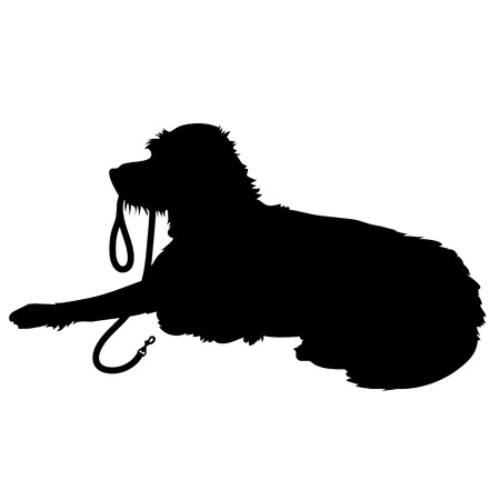 dog leash: A black silhouette of a shaggy dog lying down with his leash in his mouth waiting to go for a walk