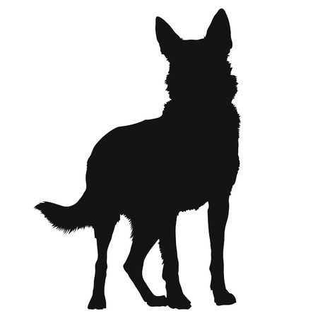 animal silhouette: A black silhouette of a standing German Shepherd