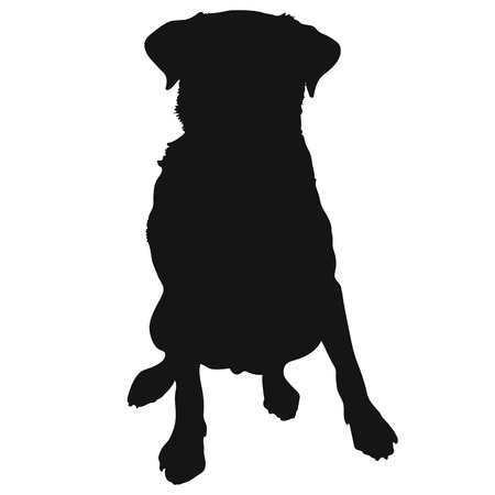 short haired: A silhouette of a sitting Labrador Retriever which could also be a generic short haired dog