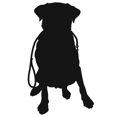 A silhouette of a sitting Labrador Retriever holding a leash in it's mouth and waiting to go for a walk.