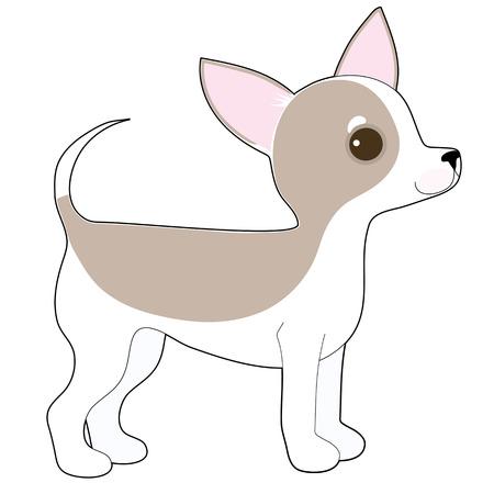 cane chihuahua: Un disegno a fumetti di un simpatico chihuahua Vettoriali