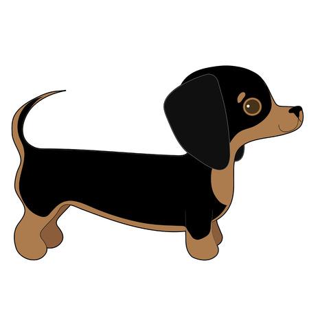 A cartoon illustration of a Dachshund puppy