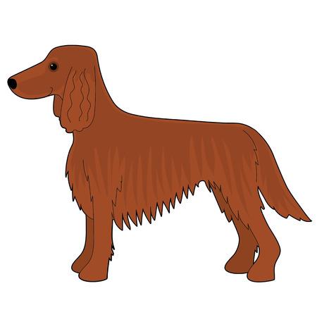 A cartoon illustration of an Irish Setter dog