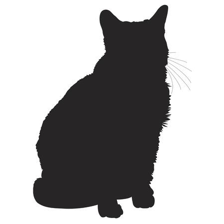 silueta gato: Una silueta de un gato negro que se sienta Vectores