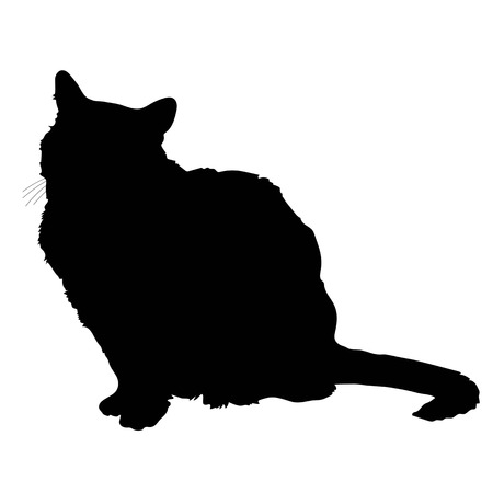 A black silhouette of a sitting cat