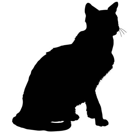 silueta de gato: Un negro silueta de un gato siamés sentado