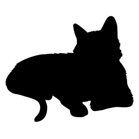 animal silhouette: A black silhouette of a cat Illustration