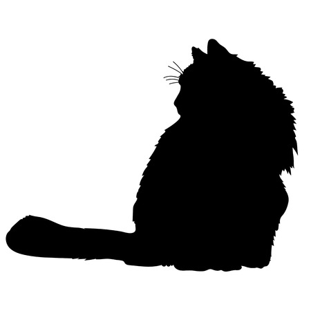 black cat silhouette: A black silhouette of a cat Illustration