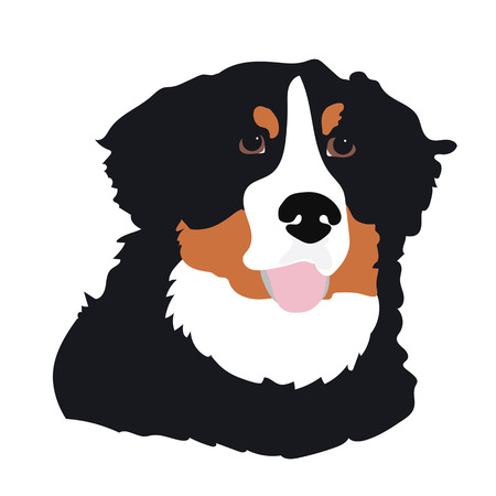 A stylized portrait of a Bernese Mountain Dog Vectores