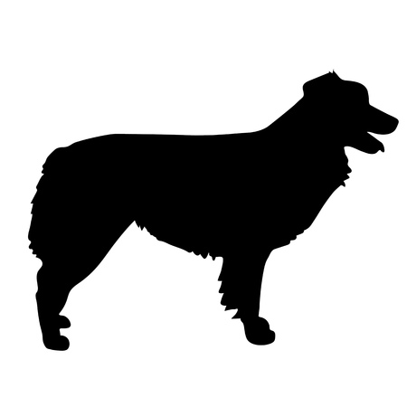 dog silhouette: A black silhouette of a standing Australian Shepherd