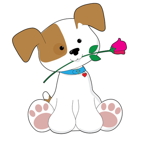 red rose: An adorable brown and white puppy is holding a pink rose in its mouth Illustration