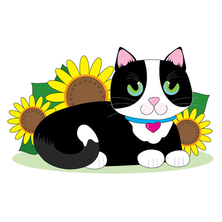 Black and white tuxedo cat lying down in a bed of sunflowers Vectores