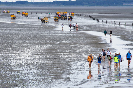 the wadden sea: people walk through the wadden sea to Neuwerk Editorial