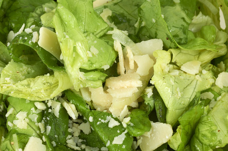 Fresh Green Salad With Cheese Topping