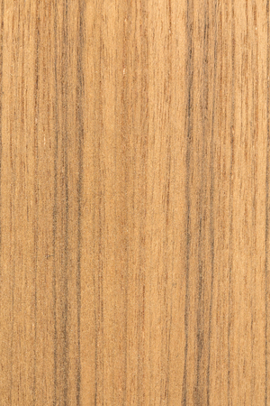 wood texture background: Wood Texture Wood Texture Background