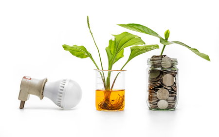 Coin in a glass with energy saving to protect the environment concept. Stock Photo