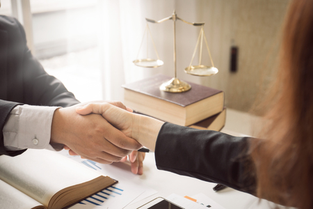 Ciężka praca prawnika z Azji w kancelarii adwokackiej. Doradztwo i udzielanie porad oraz ściganie w sprawach dotyczących inwazji przestrzeni kosmicznej między urzędnikami prywatnymi i rządowymi w celu znalezienia sprawiedliwego porozumienia.