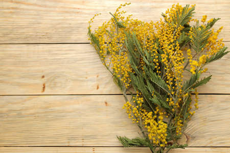 Beautiful bouquet of yellow mimosa flowers on a natural wooden table. top view. free space. space for text Banco de Imagens