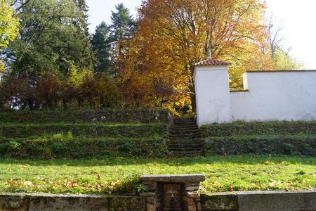 Park, stone head - Vrchotovy Janovice, Czech Republic