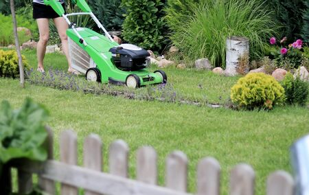 A young woman mowing the lawn with a petrol mower Stockfoto