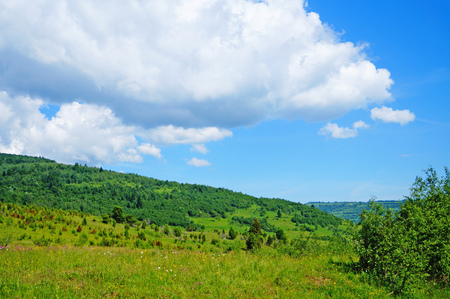Panoramic view of the Carpathian mountains, green forests and flowering meadows on a sunny summer day