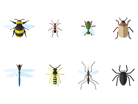 Set of 8 insects icons in flat style. Bee, ant, fly, bug and other.