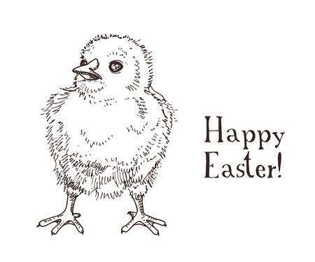 Hand drawn black and white easter gift card with little chick. Greate holiday doodle vintage illustration with funny yellow bird