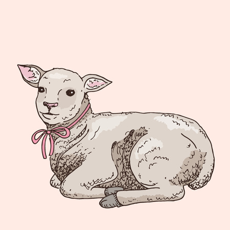 Hand drawn lamb. Cute small animal. Easter symbol. Doodle illustration Stock Illustratie
