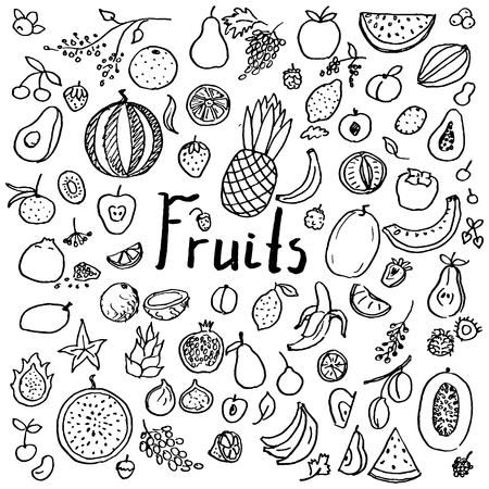 Set of hand drawn doodle fruits. Fresh and tasty food. Collection of design elements 版權商用圖片