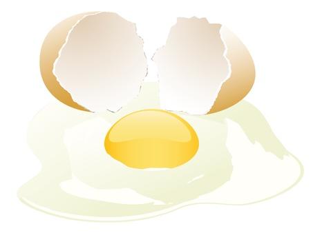 broken egg: broken egg vector