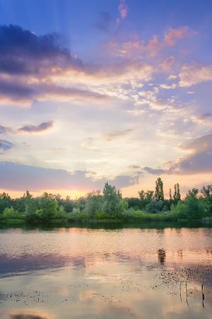 bright summer picture summer ukraine