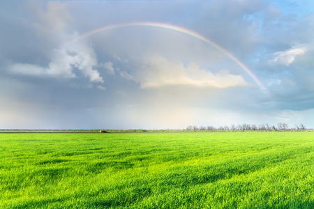 rainbow over the field  early spring fields of Ukraine the beauty of local nature