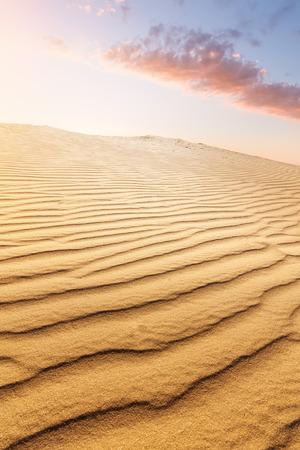 sand dune  bright summer evening before sunset photo