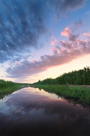 sunset in a field after a heavy rain  bright summer photo Ukraine