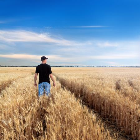 man in a wheat field  sunset field, evening photo Ukraine