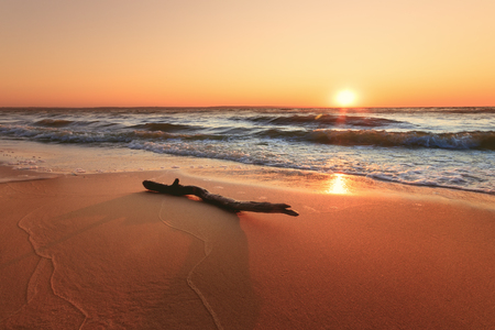 log lying on the shore of an abandoned beach / troubled water dawn morning Stock fotó