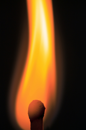 burning match in the dark / match fire on a black background close-up