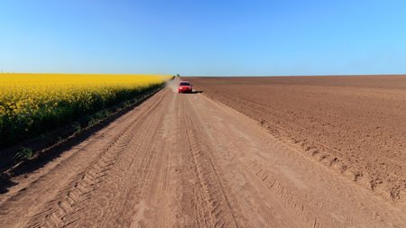 the road along canola field