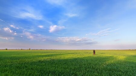 man looks at the sky / bright spring landscape