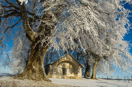 small chapel under trees and snow
