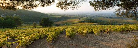 enclave: autumnal landscape of Provence Stock Photo
