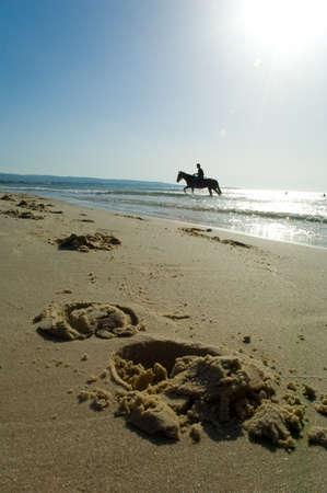 mammalian: walk on horseback on the beach Stock Photo