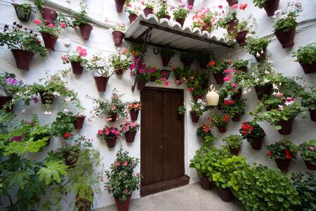 collectives: bloomed patio - Cordoba Stock Photo