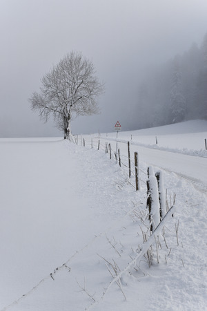 road in the snowy countryside