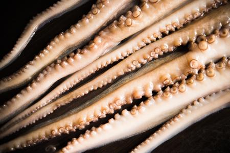 pulpo: Tentáculos primas de pulpo en la tabla oscuro