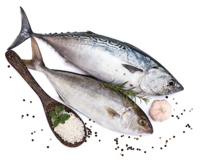 Fresh fish, rice and spices on white background